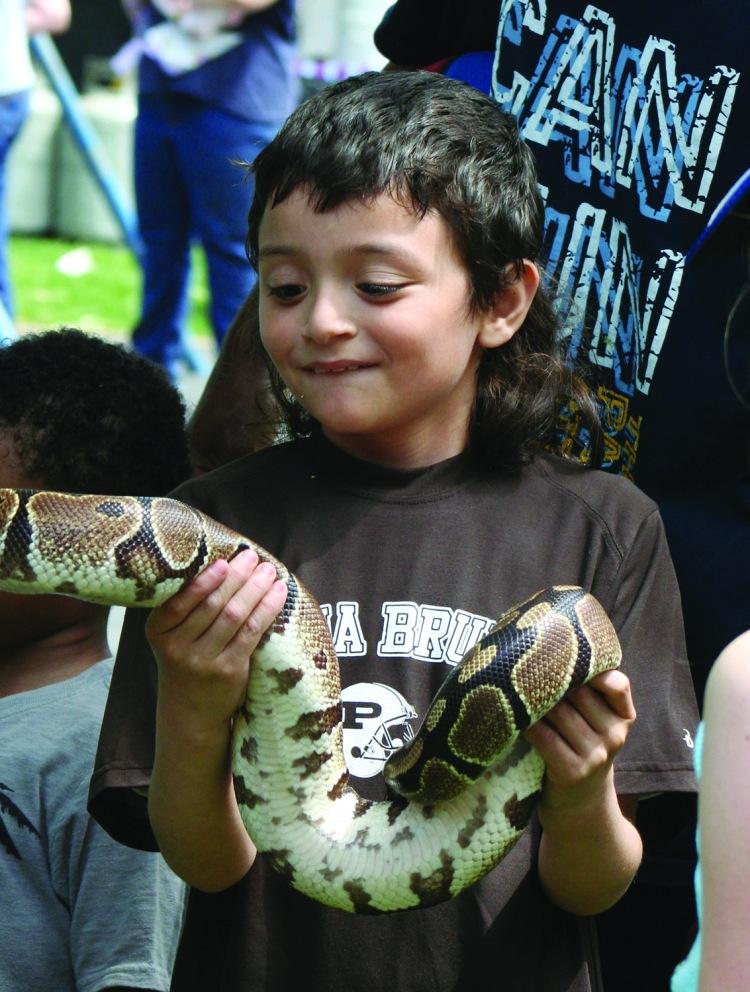 Holding the snake