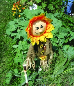 PHOTO BY DEBBIE SADLON Saturday, August 8, 2015; 20th Anniversary Celebration, Bigelow Garden Site, 3164 W. 82nd Street: A sunflower scarecrow brightens Jan Lascko's garden.