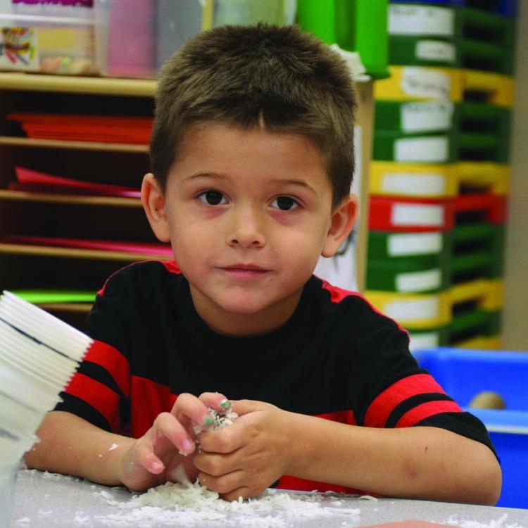 Preschool Boy