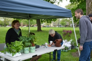 Sandy Schultz, a former Tremont resident and member of Tremont Gardeners purchased a number of plants for her garden.