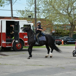 Dancing like no one is watching is Cleveland Police Mounted Unit Mandy.
